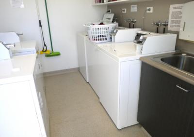 laundryArtboard 172_ppi_Trans